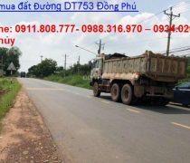 Đường DT753
