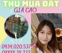 Cần mua đất đường DH 702 huyện Dầu Tiếng giá cao